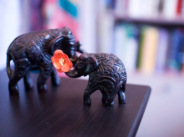 Wooden elephants from Nepal - ISO 400, no motion blur.