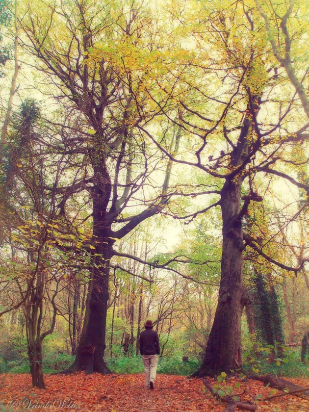 Dayal walking through trees in reddish tinted woods, surrounded by haze.