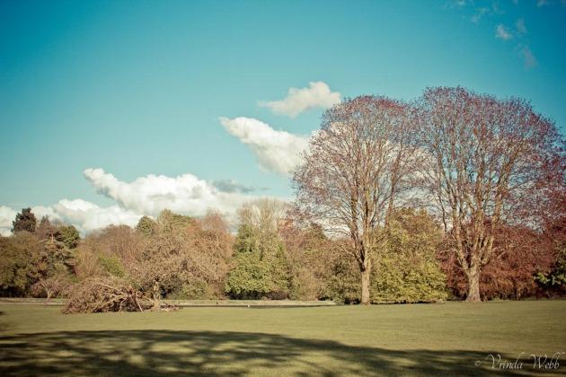 Verulam Park, St Albans, on a sunny spring day